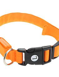 cheap -Dog Collar LED Lights Nylon Orange Red