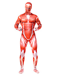 cheap -Inspired by Attack on Titan Bertolt Huber Anime Cosplay Costumes Japanese Cosplay Suits Patchwork Leotard / Onesie For Men's / Unisex / Lycra / Multi-Color Zentai Suits / Lycra