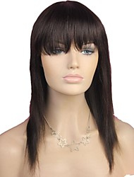 cheap -Wig style Straight Wig Natural Hairline African American Wig 100% Hand Tied Women's Long Human Hair Capless Wigs