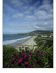 cheap -Sketchy Sunny Seaside Landscape Roller Shade