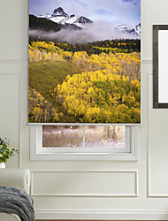 cheap -Contemporary Mountain Forest Roller Shade