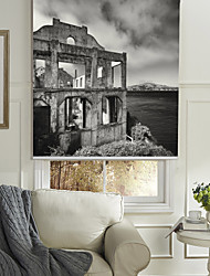 cheap -Monochrome Style Deserted House Roller Shade