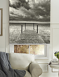 cheap -Monochrome Style Riverbank Roller Shade