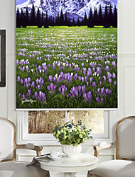 cheap -Oil Painting Style Realistic Snow Mountain & Flowers Roller Shade