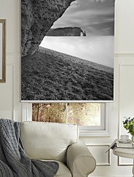 cheap -Monochrome Style Great Rock Roller Shade