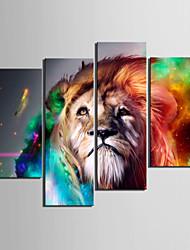cheap -Print Rolled Canvas Prints - Animals Four Panels Art Prints
