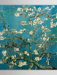 cheap -Canvas Oil Paintings Almond Branches in Bloom, San Remy, c.1890 By Vincent Van Gogh Hand-Painted Ready to Hang