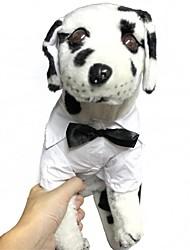 Недорогие -Собака Футболка Одежда для собак Терилен Костюм Назначение Лето