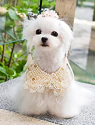 cheap -Dog Necklace Dog Clothes White Champagne Costume Plastic
