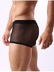 abordables -Homme Maille Maille Super sexy Boxer Short Couleur Pleine Taille médiale Noir Bleu clair Blanche M L XL