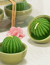 cheap -Potted Flower Ball Cactus Two Pack Gift Box Candle