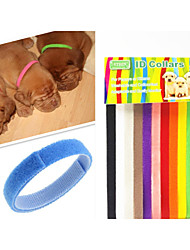 cheap -Cat Dog Collar Adjustable / Retractable Rainbow Nylon Rainbow 1 set