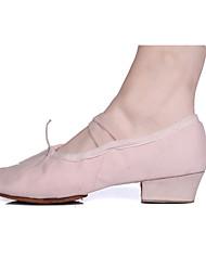 cheap -Women's Dance Shoes Canvas Ballet Shoes Heel / Split Sole Chunky Heel Customizable Black / Red / Pink / Indoor / Practice / Professional / EU36