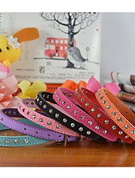 cheap -Fashion Suede Leather Rhinestone  Collar for Cat and Puppy (Assorted  Colors)