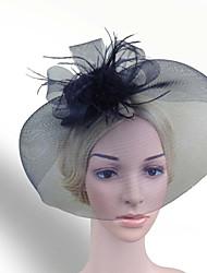cheap -Women Fabric Hair Clip , Party Mesh / Feather Veil Headpiece