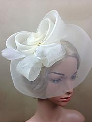 cheap -Women Fabric Hair Clip , Party Mesh / Feather Simple Veils Headpiece