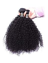 cheap -3 Bundles Mongolian Hair Kinky Curly Virgin Human Hair Natural Color Hair Weaves / Hair Bulk Human Hair Weaves Human Hair Extensions