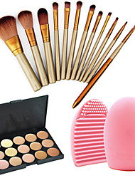 cheap -12pcs-professional-cosmetic-makeup-brushes-set-15colors-concealer-palette-1pcs-brush-cleaning-tool