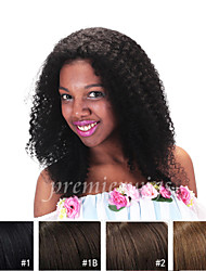 cheap -Human Hair 100% Hand Tied Full Lace Wig style Kinky Curly Wig 120% Density Natural Hairline African American Wig 100% Hand Tied Women's Short Medium Length Long Human Hair Lace Wig Premierwigs