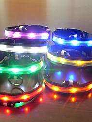 cheap -Adjustable LED Flash Collar for Dogs Four Colors (Assorted Size,Assorted Color)