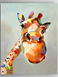 cheap -Oil Painting Hand Painted - Animals / Pop Art Modern Canvas / Stretched Canvas