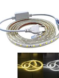 cheap -JIAWEN 2M Strips Light 120 leds SMD 5050 Wateproof Warm White Cold White IP65(EU Plug , AC 220V)
