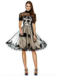 cheap -A-Line Illusion Neck Knee Length Lace Over Tulle Color Block / Black Wedding Guest / Cocktail Party Dress with Lace Insert / Embroidery / Appliques 2020 / Illusion Sleeve