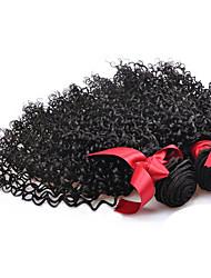 cheap -2 Bundles Malaysian Hair Curly Curly Weave Human Hair Natural Color Hair Weaves / Hair Bulk Human Hair Weaves Human Hair Extensions / 8A