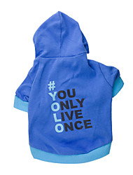 cheap -Hoodies for Dogs Blue Winter Fashion XS / S / M / L Cotton