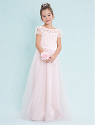 cheap -A-Line Scoop Neck Floor Length Lace / Tulle Junior Bridesmaid Dress with Lace / Natural