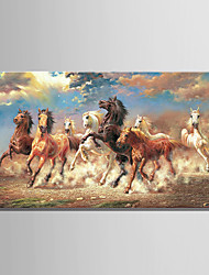 cheap -Oil Painting Hand Painted - Animals Comtemporary Stretched Canvas