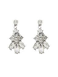 cheap -Women's Drop Earrings Luxury Druzy Resin Rhinestone Imitation Diamond Earrings Jewelry Silver For
