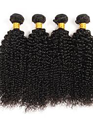 cheap -4 Bundles Brazilian Hair Kinky Curly Curly Weave Virgin Human Hair Natural Color Hair Weaves / Hair Bulk Human Hair Weaves Human Hair Extensions / 10A