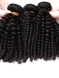 cheap -3 Bundles Brazilian Hair Kinky Curly Curly Weave Virgin Human Hair Natural Color Hair Weaves / Hair Bulk Human Hair Weaves Human Hair Extensions / 10A