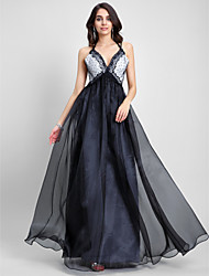 cheap -A-Line Celebrity Style Prom Formal Evening Dress Spaghetti Strap Sleeveless Floor Length Organza with Lace 2020