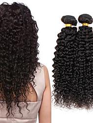 cheap -4 Bundles Hair Weaves Indian Hair Curly Kinky Curly Human Hair Extensions Virgin Human Hair Natural Color Hair Weaves / Hair Bulk 8-26 inch Hot Sale / 10A
