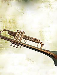 cheap -http://www.lightinthebox.com/music-toy-metal-bronze-leisure-hobby-music-toy_p5096695.html