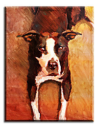 cheap -100% Handpainted High Quality Modern Picture On Canvas Wall Art Oil Painting Cute Doggy