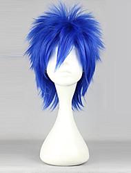 cheap -Fairy Tail Mystogan Cosplay Wigs Men's 14 inch Heat Resistant Fiber Blue Anime