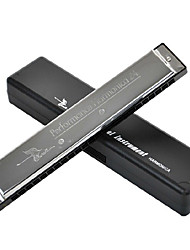 cheap -swan-24-hole-tremolo-a-c-harmonica-at-the-beginning-of-the-students-play-the-harmonica