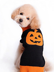 cheap -Dog Sweater Dog Clothes Pumpkin Black Woolen Costume For Spring &  Fall Winter Men's Women's Holiday Halloween