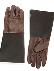 cheap -Pair Cowhide Leather Gloves Hand Protection for Reptile Keeper