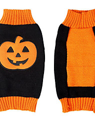 cheap -Dog Costume Sweater Dog Clothes Cartoon Orange Acrylic Fibers Costume For Spring &  Fall Winter Men's Women's Halloween