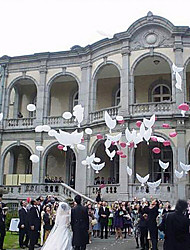 cheap -Eco-friendly Material Wedding Decorations