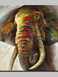 cheap -Mintura® Hand Painted Colorful Elephant Animal Oil Paintings On Canvas Modern Abstract Wall Art Picture For Living Room Home Decoration Ready To Hang