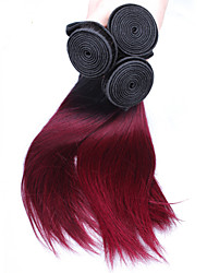 Недорогие -Перуанские волосы Прямой Натуральные волосы 300 g Омбре Ткет человеческих волос Расширения человеческих волос / Прямой силуэт