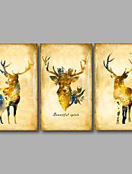 Недорогие -Отпечатки на холсте Абстракция Животное Modern,3 панели Холст Горизонтальная С картинкой Декор стены For Украшение дома