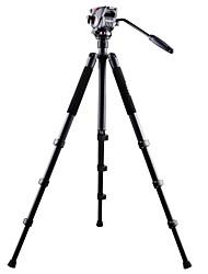 Недорогие -Алюминий 620mm 4.0 Секции Цифровая камера Трипод