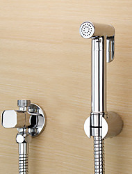 cheap -ChromeToilet Handheld bidet Sprayer Self-Cleaning Contemporary