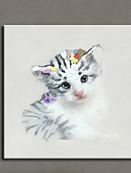 cheap -Lovely Animal Cat Oil Painting Hand Painted Canvas Animal Painting Cat Home Decor Picture Wall Art Artwork Canvas Photo Ready Made Frame
